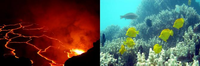 In February 2017, scientists begin collecting data on coral reef health and volcanic emissions and eruptions in Hawaii using NASA airborne instruments, watercraft, and ground-based sensors. Credits: NASA/Benjamin Phillips (left), NOAA (right)